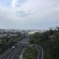 横浜横須賀道路の高い橋