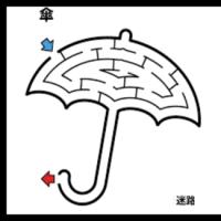 今日は一日雨です