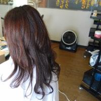 髪を蘇さすヘアー・リターンコース楽しみです(^o^)(^o^)