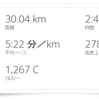■ 明けまして30km