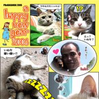 happy new year 2006 !