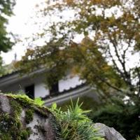 お出かけ  秋の旅    ~~3