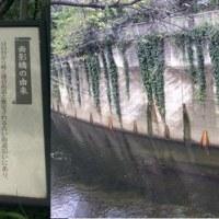 426  神田川
