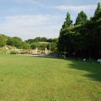 満開のあじさいが咲き誇る大阪蜻蛉(とんぼ)池公園・・・岸和田市
