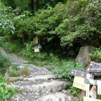 棒ノ折山へハイキング その2 Hiking to Bo-no-Oreyama No.2