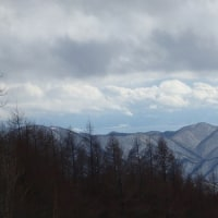 裏磐梯スキー '17/2/25
