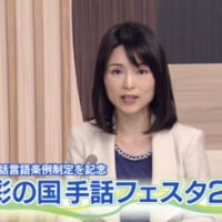 彩の国手話フェスタ2017(テレ玉)