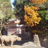 12/3は金沢動物園へ