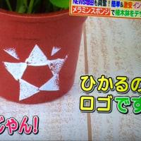 ヒルナンデス 光くん (^_-)-☆