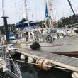 7月24日 (月)雲☀️福田漁港から冨貴62マイル