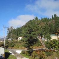今秋最低気温更新・・・-2℃と霜降りず・・・ブログ更新しました!