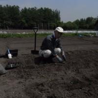 農園は水が引きません。一日二日で排水可能です