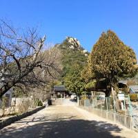 小春日和の右田ヶ岳を歩いてきました