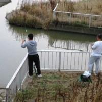 夕方の釣り