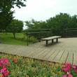 成田 さくらの山公園へリベンジ。