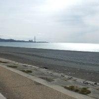 今日のお散歩(煙樹が浜:和歌山)