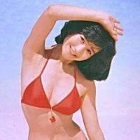 岡田有希子。可愛い。