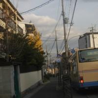 大阪も、良い天気に恵まれました。