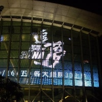 「RE: D.N.A.@武道館場」まつり! その3