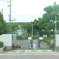 大阪府立堺養護学校(今は校名が変わっているようです)