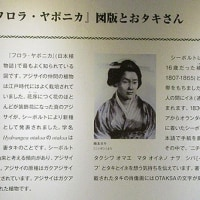 シーボルトの黒と白。。スパイ大作戦?!と鎖国と日本初の女医誕生~