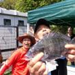 2017.5/28 茨城県鹿島灘ヘッドランドでのクロダイ釣り大会