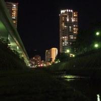 Walking at today's night