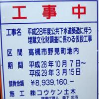 野見神社の「とんど焼き」