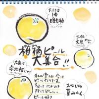2017.3.2 かんきつピール大集合!!