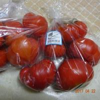 トマトを求めて5時間・・・