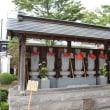 篠窪(しのくぼ)の隣町 秦野市大用寺のサルスベリ(百日紅)が超綺麗