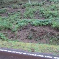 道路の草刈り