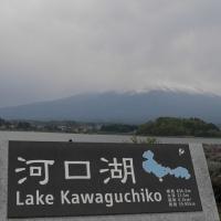 富士山キャンプ 3日目 ~とろろ蕎麦より、富士宮焼きそばが旨い