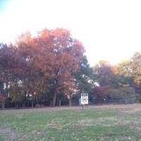 公園サッカー⚽️