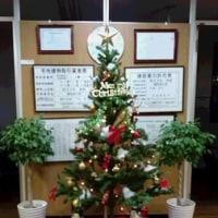【カトリホーム】 ~ クリスマス編 ~ №4