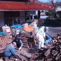 土手の木を伐採しキノコ作りに。