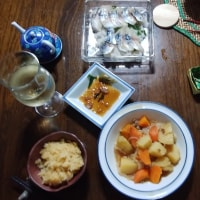 晩飯シリーズ #7 鯖生酢し