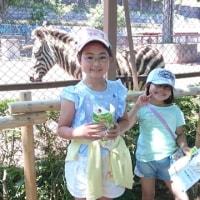 ☆動物園☆