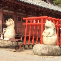 狸は一夫一婦制、大変仲がよい。だからお寺の境内に「人間よ、手本にせよ」と。