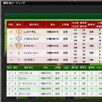 ナドは今日ジャパンカップです。