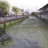 SNAKEHEADHUNTING2響け!蛇頭浪漫歌DAY5