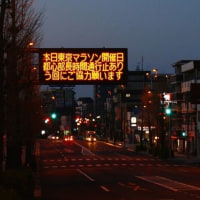 東京マラソンかぁ・・・・・