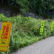 2017/07/27(木) 食事制限、尖山