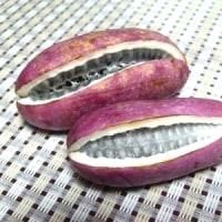 アケビの皮の天ぷらが美味しいらしい