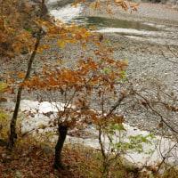 大多摩ウォーキングトレイル(古里~氷川) 2012年12月2日