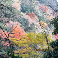 入道ヶ岳・井戸谷~二本松尾根周回