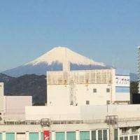 静岡に行って来ました