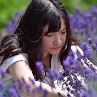 「ラベンダー摘み」 いわき 高野花見山にて撮影!