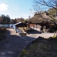 絵になる小さな池・・・金鱗湖