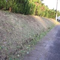 草刈りと組み立て!